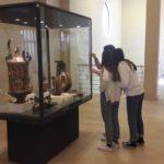 Alla scoperta del Museo Ridola